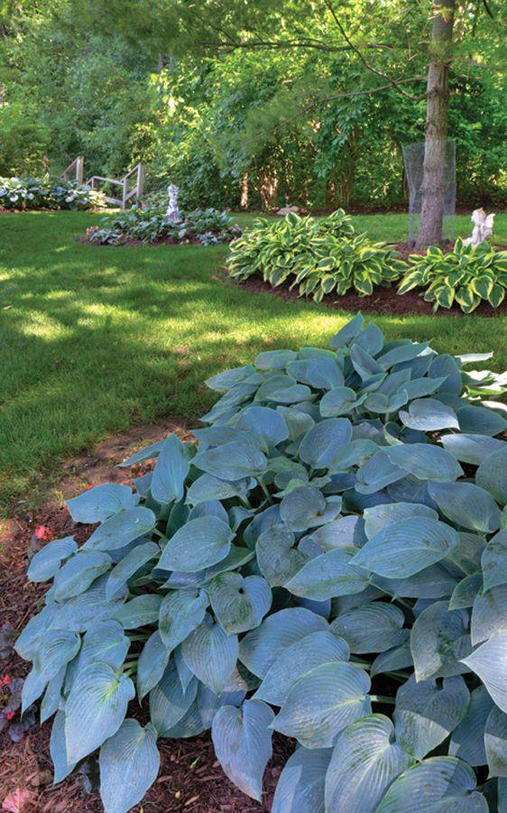 Front yard idea...Hosta haven | Gardening | Pinterest | Diy garten ...