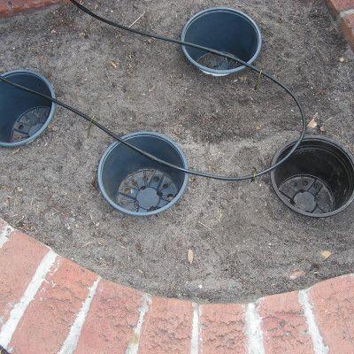 Pot In Pot Gardening Method Bury An Empty Pot In A Spot