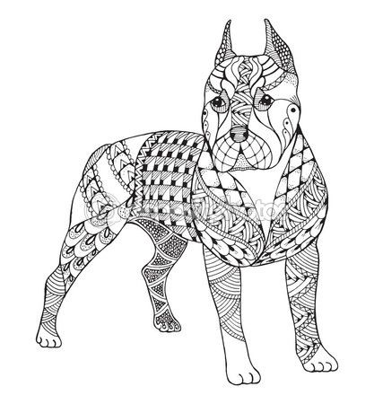Pit Bull Terrier Zentangle Estilizado Vector Ilustracin Freeh