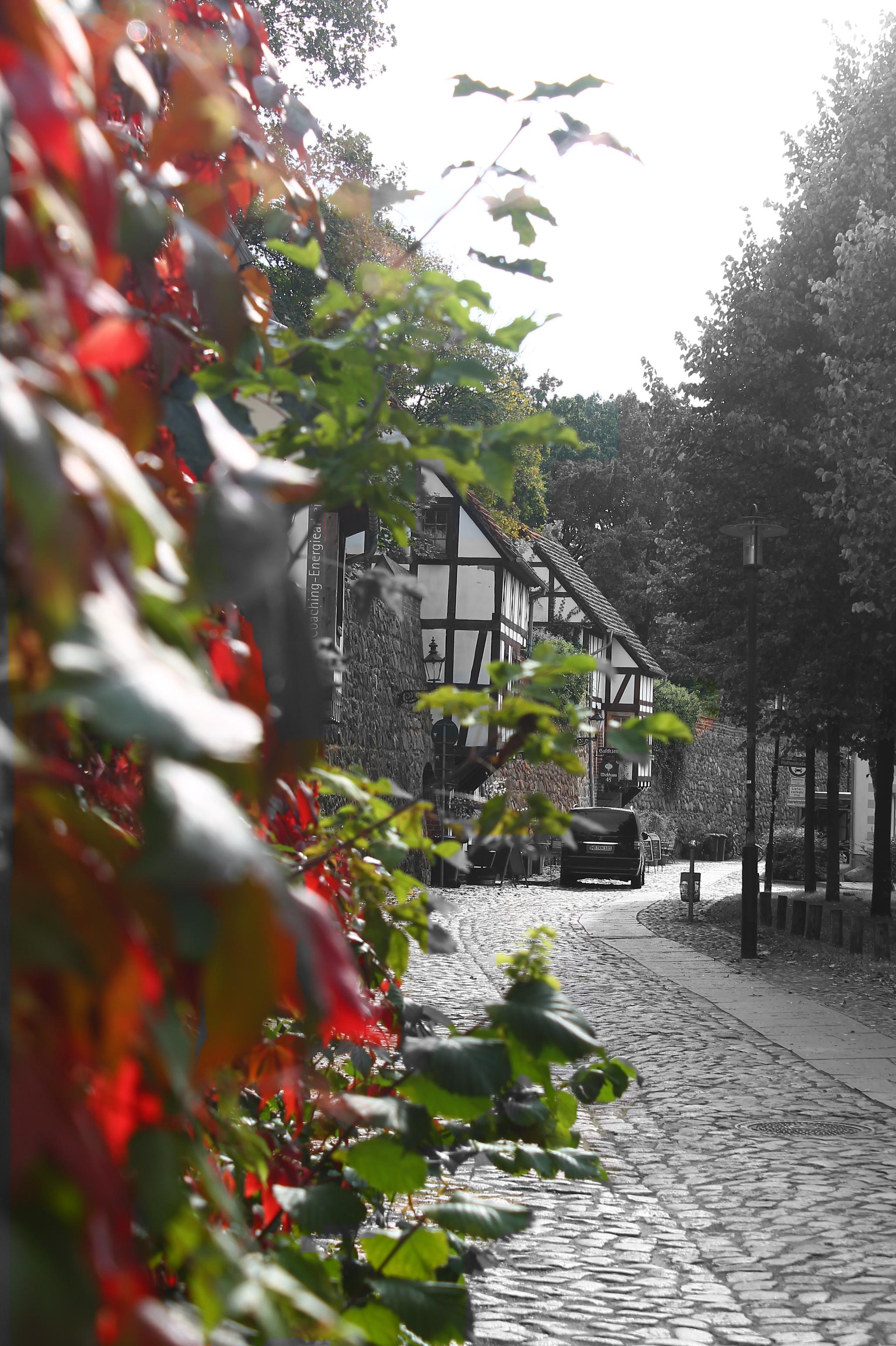 Stadtmauer mit Wiekhaus Bilder, Mecklenburg vorpommern