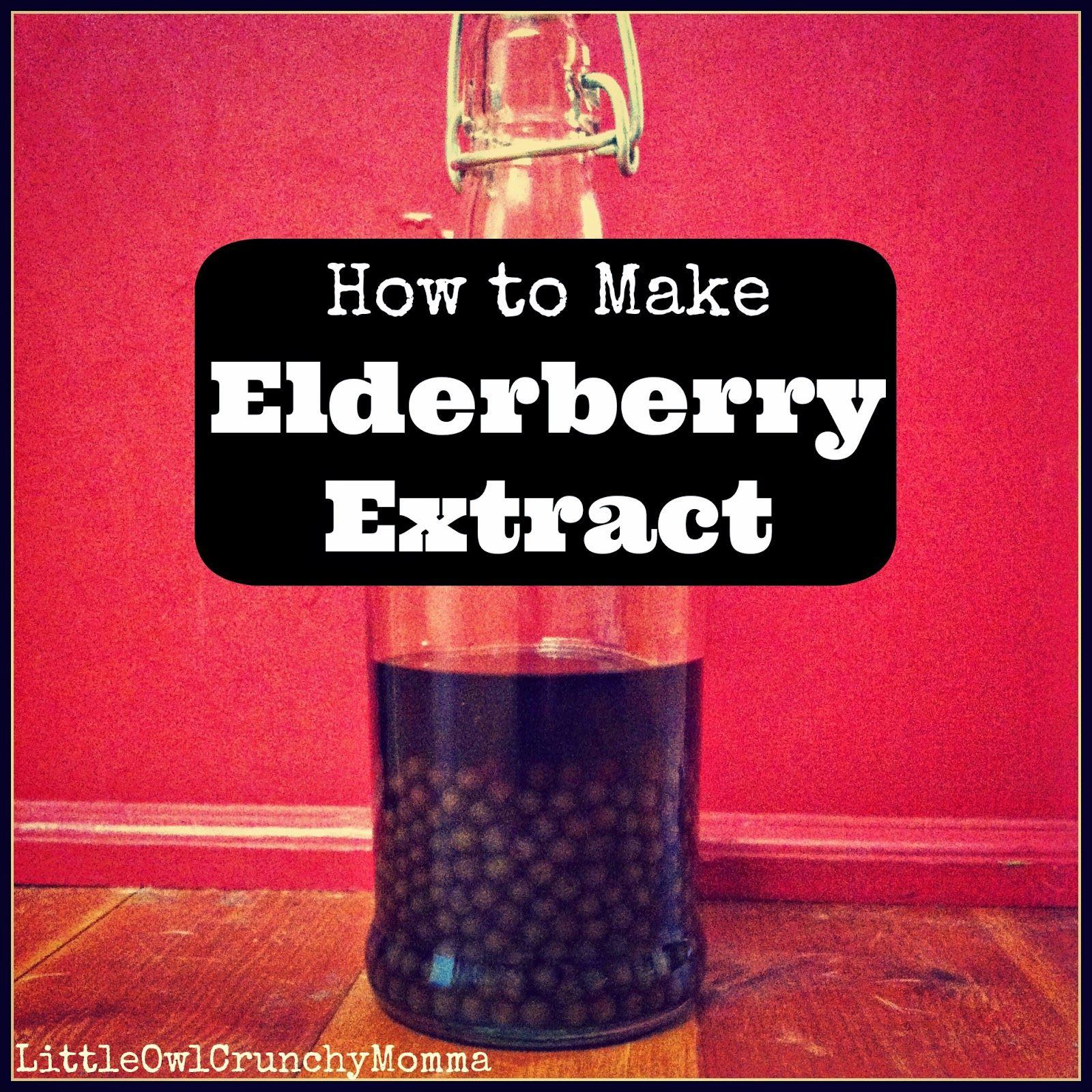 LittleOwlCrunchyMomma How to Make Elderberry Extract or How to Make Elderberry Tincture