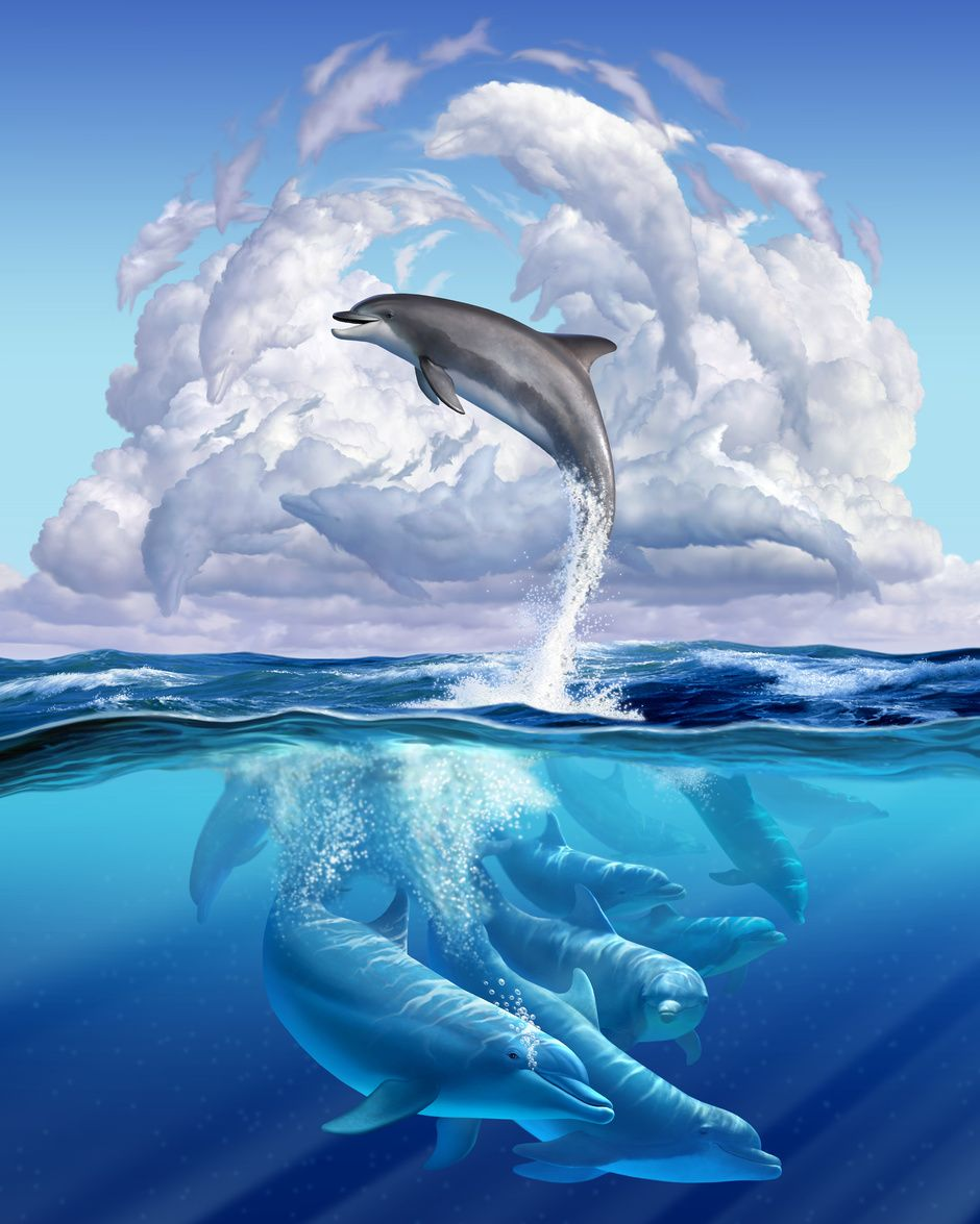 Dolphonic Symphony by Jerry LoFaro | Whimsical | 2D | CGSociety