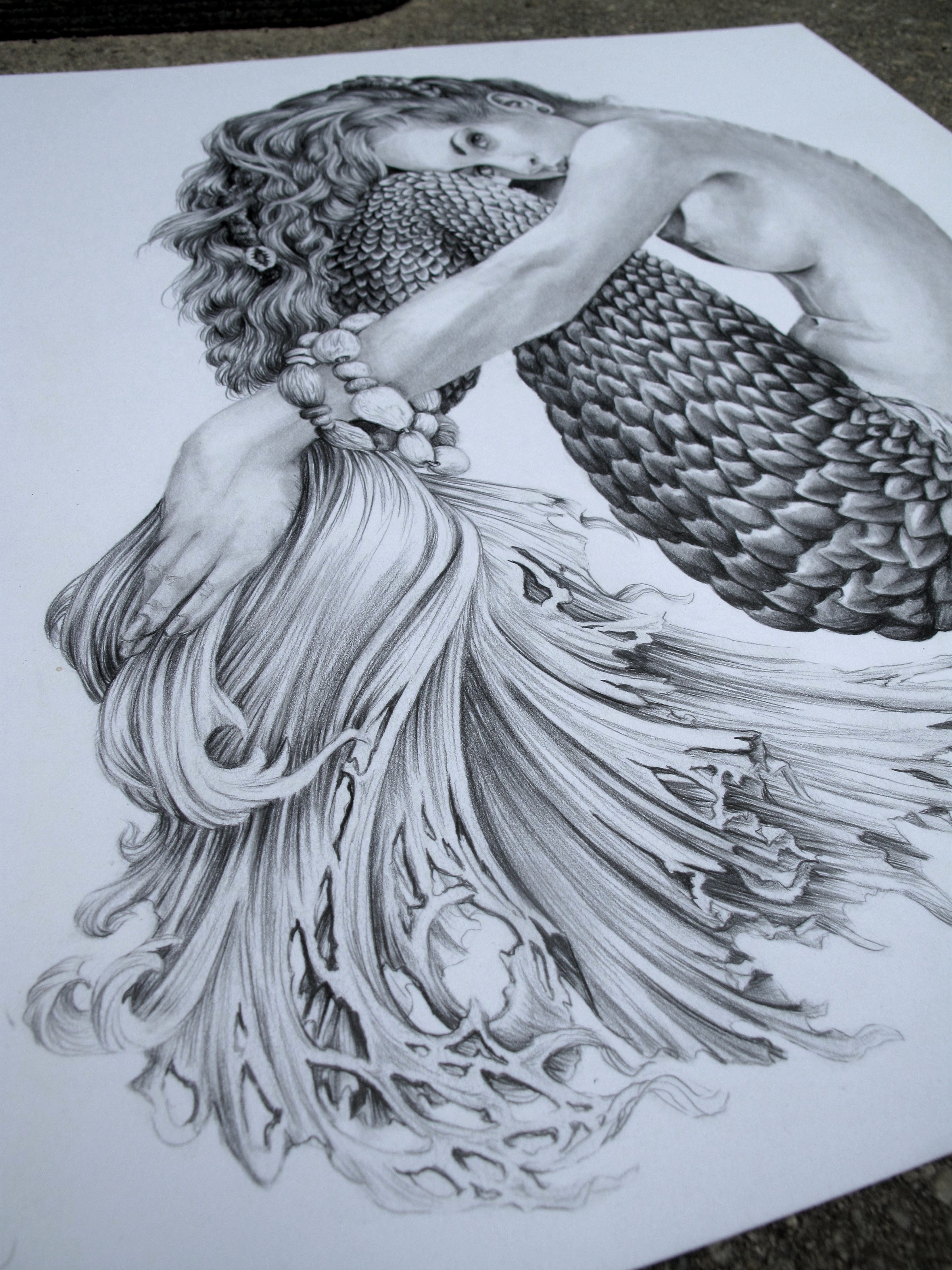 Breasted Mermaid Art Created 14 X 17 Recycled Bristol Graphite. .05 And