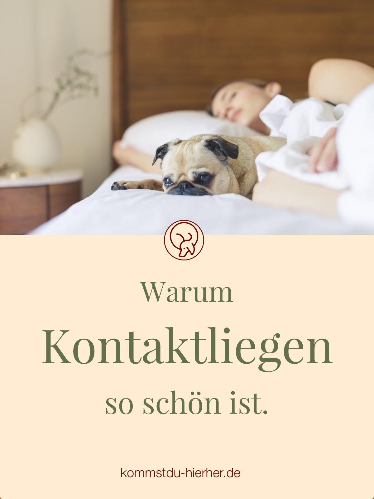 Kontaktliegen Hundeverhalten Hunde Hunde Bett