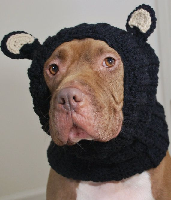 Black Bear Dog Snood Made To Order By Courtanai On Etsy 35 00 With Images Dog Snood Bear Dog Dogs