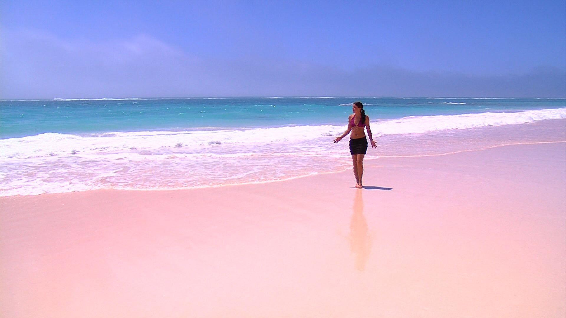 Pink sand beach the beach and the sea pinterest for Bahamas pink sand beach