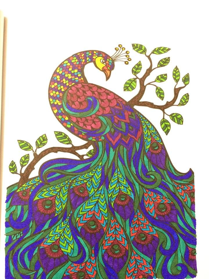 FREE ADULT COLORING BOOK Check Out This Beautiful Colored