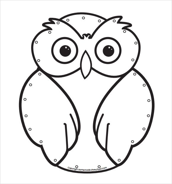 Owl Template Download  MadarakBirds    Owl Template