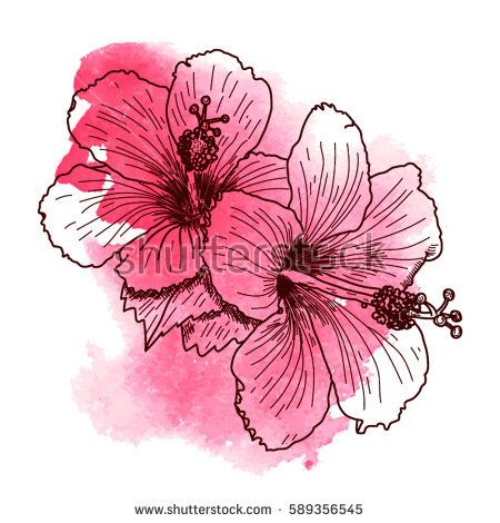 A Bouquet Of Tropical Hibiscus Flowers Hand Drawn Sketch Texture Background Watercolor Effect Vec Hibiscus Drawing Watercolor Tattoo Flower Hibiscus Flowers