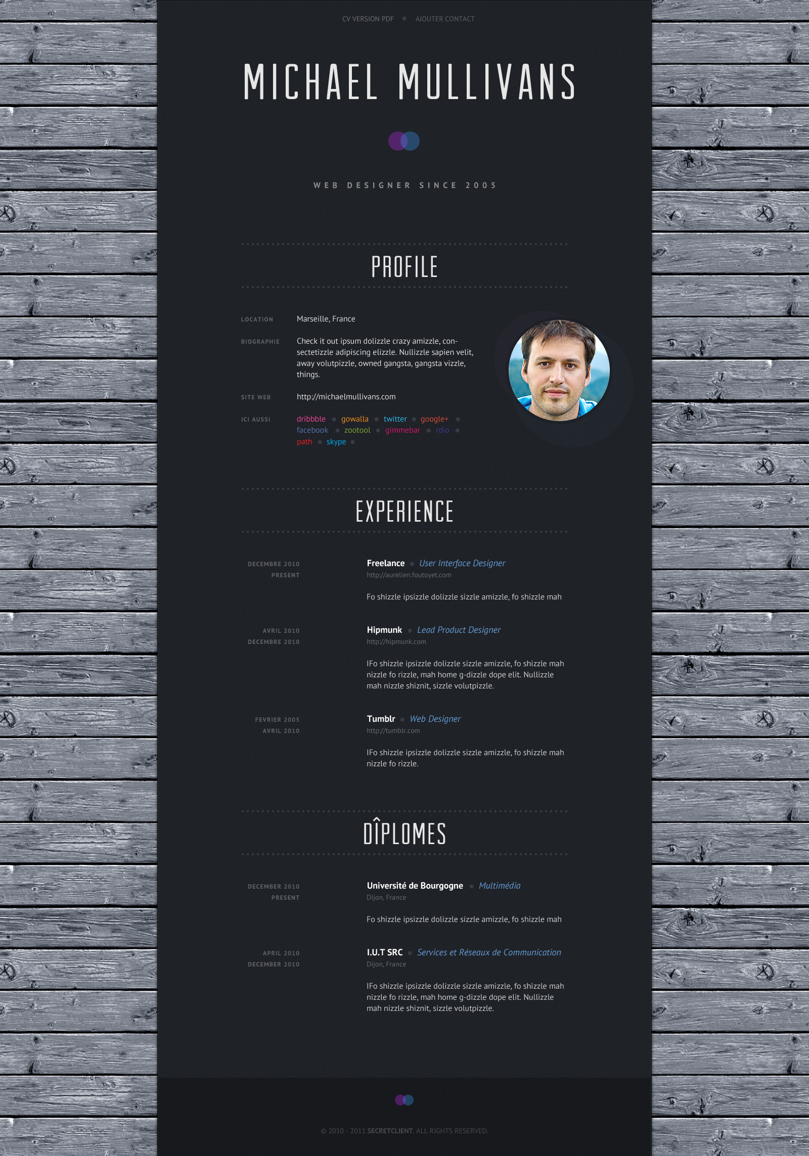 great cv layout  simple clean design   web designer  notyouraveragecv