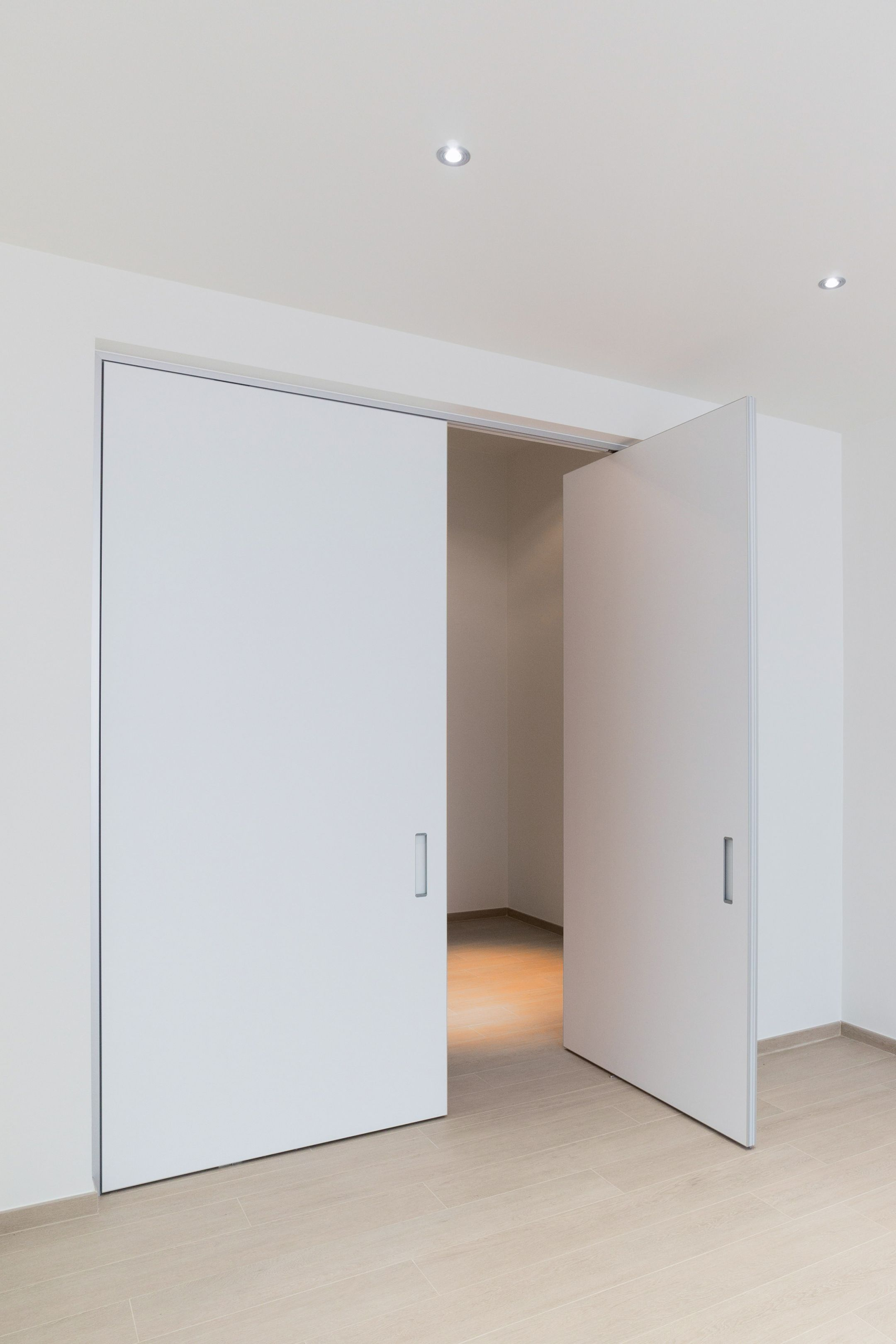 Double Pivot Door With Invisible Pivot Hinges By Anywaydoors