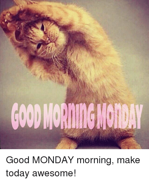 Funny Good Morning Memes 2018 | Good Morning Memes | Funny Memes | Funny good  morning memes, Cute good morning, Monday morning images