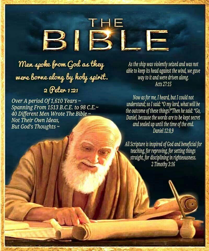 John 1, King James Version (KJV) | The Bible App