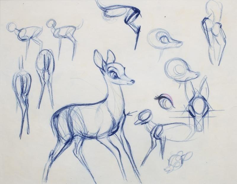 Walt Disney Bambi Sketches Art Creativity Pinterest