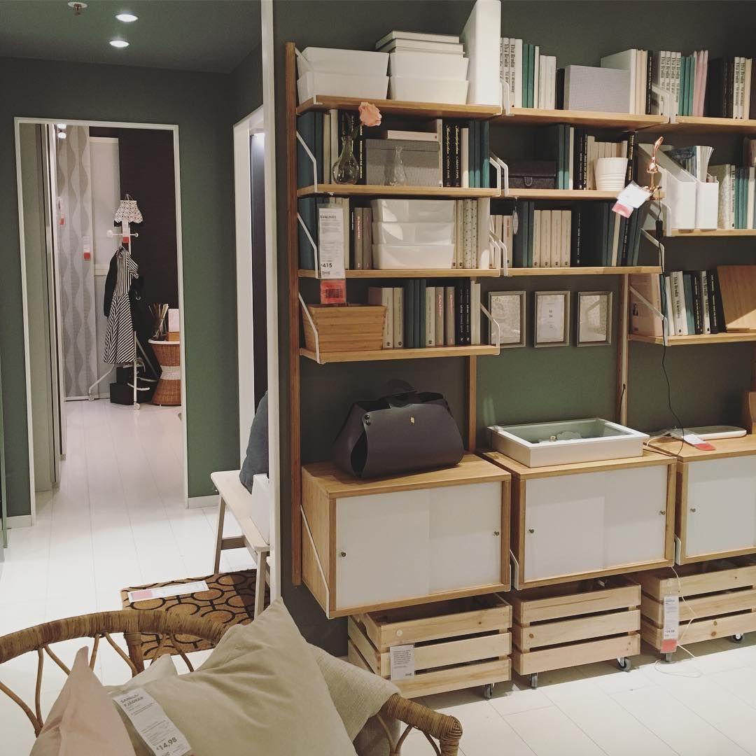 Peignez Tout En Vert Vert Plafond Murs Bambou Svalnas