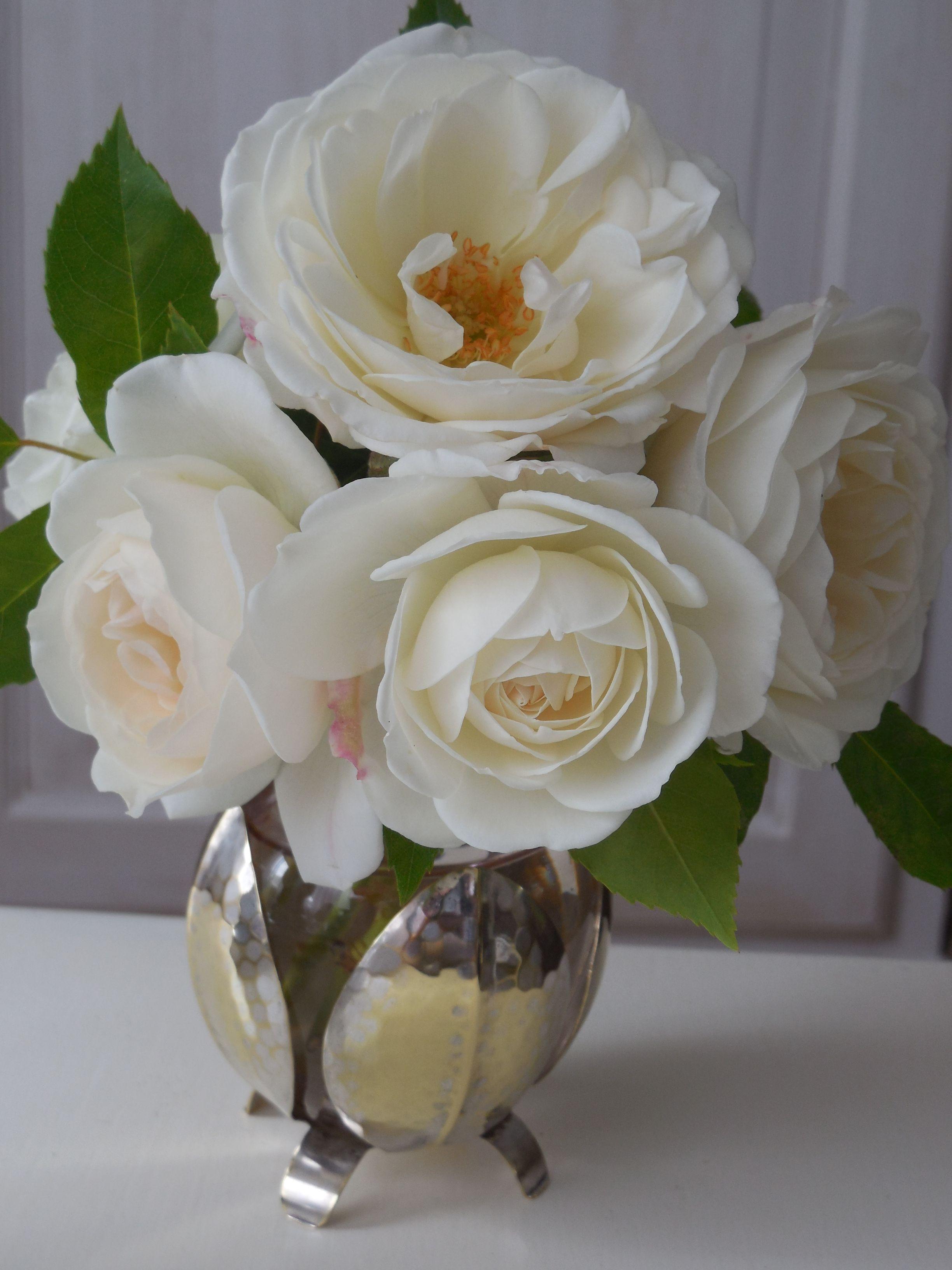 vaasja met rozen