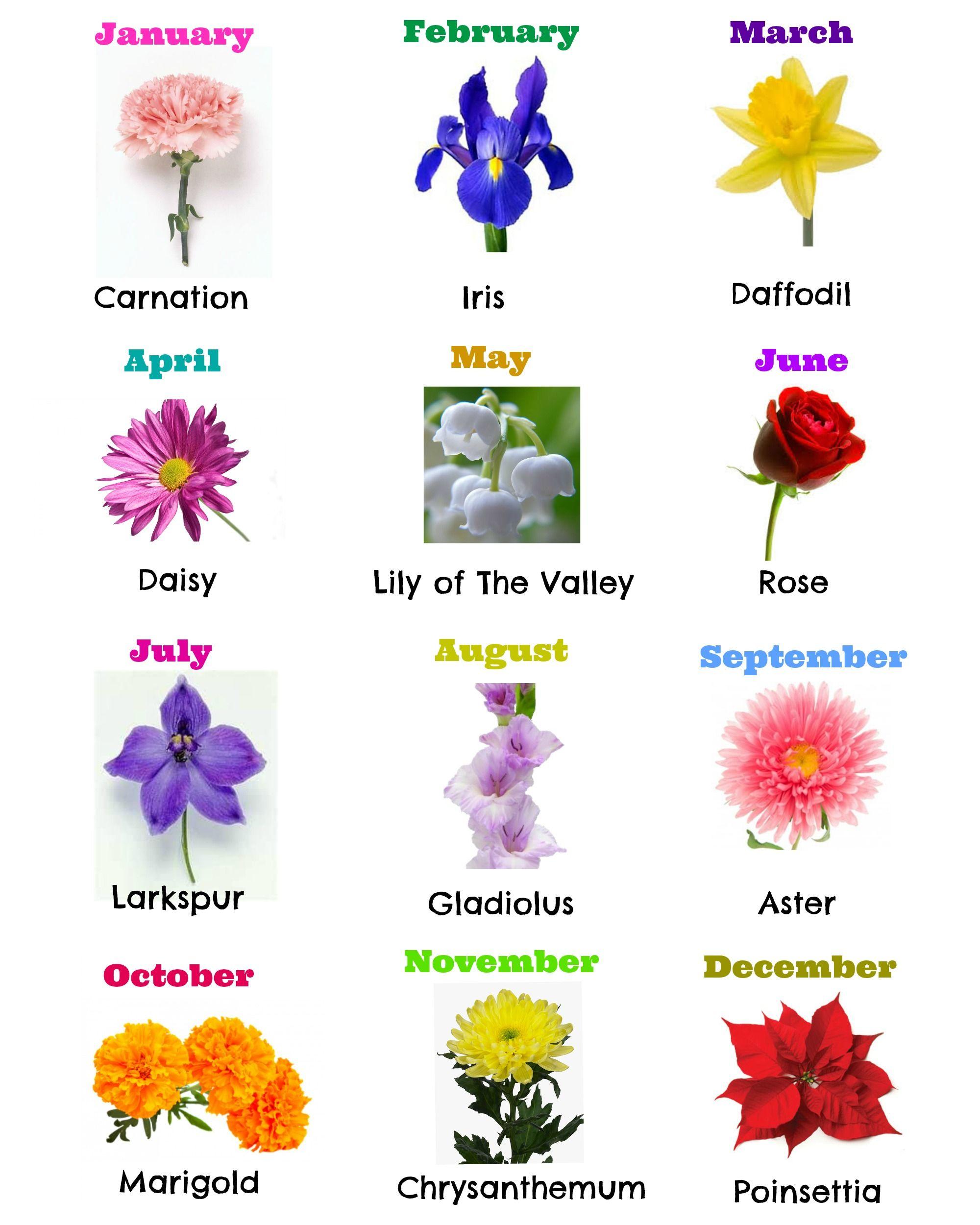 Birth Month Flowers Gifts Tattoos Pinterest Birth Month
