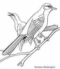 Florida state bird coloring pages ~ florida state bird drawing - Google Search | Bird coloring ...