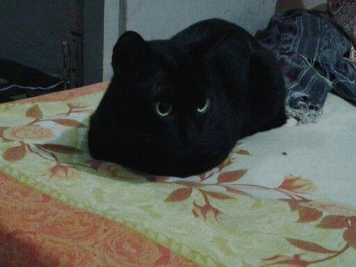My name black