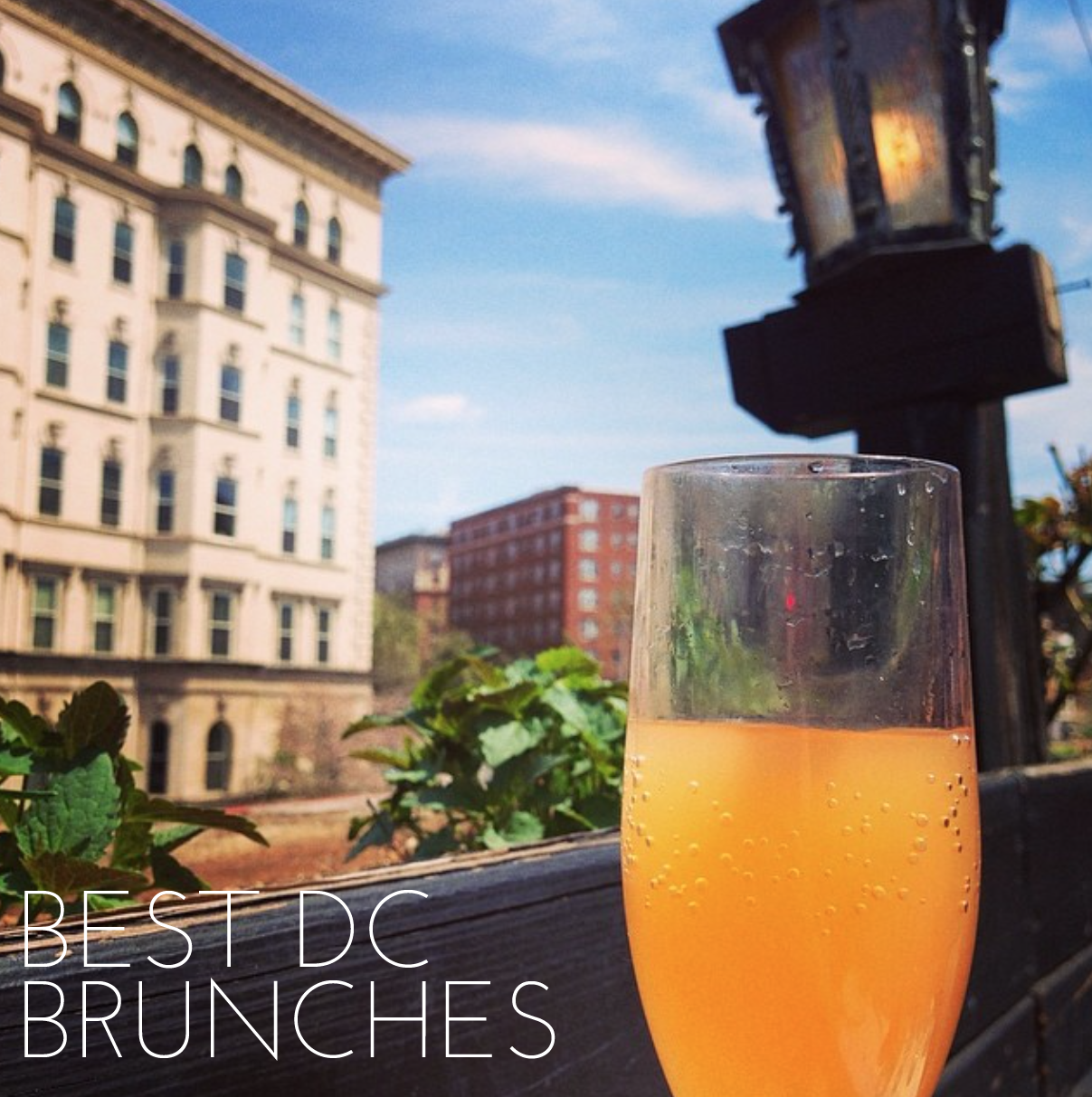 The Best Bottomless Brunches In DC. @Andi Fisher Of