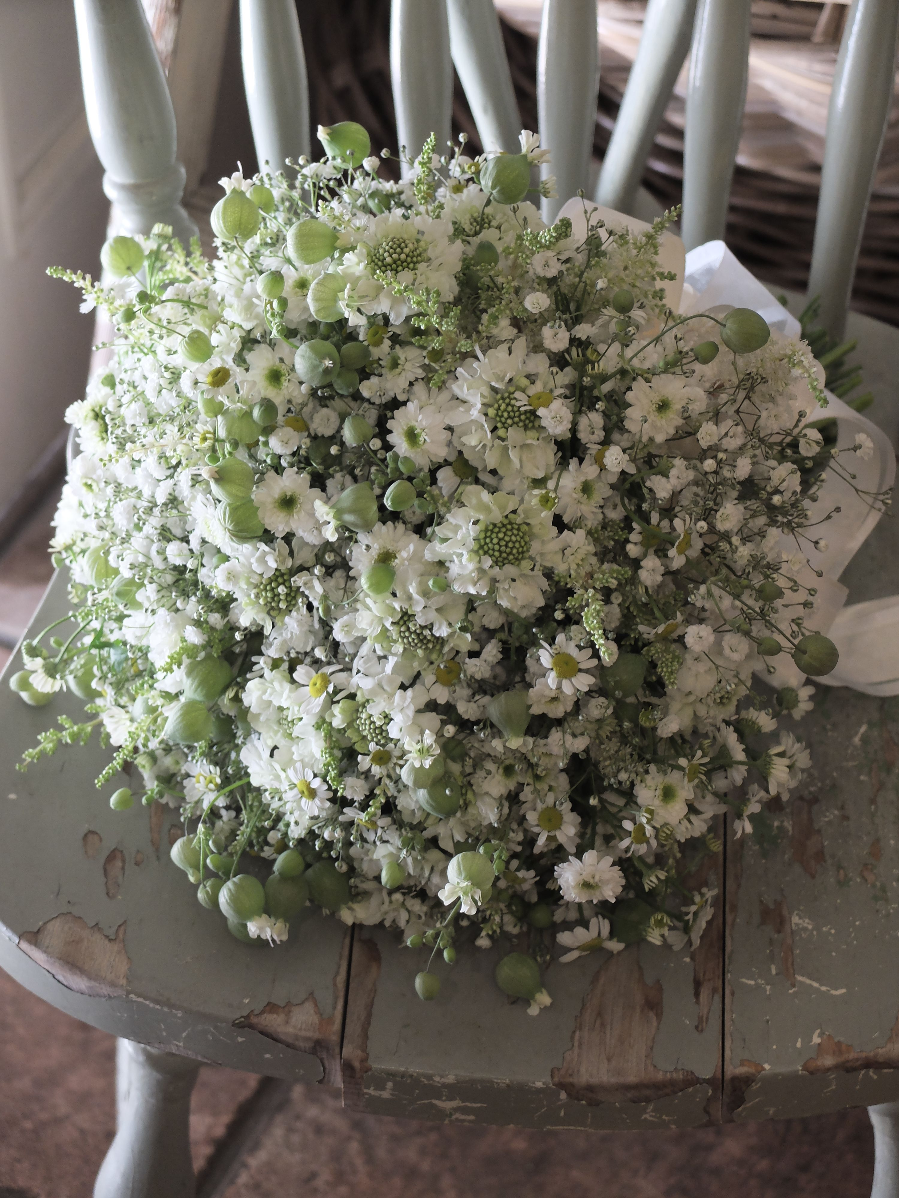 Baby S Breath Scabiosa And Feverfew Flowers Bouquet Wedding Bouquets Wedding Flowers