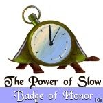 slow down fast blog