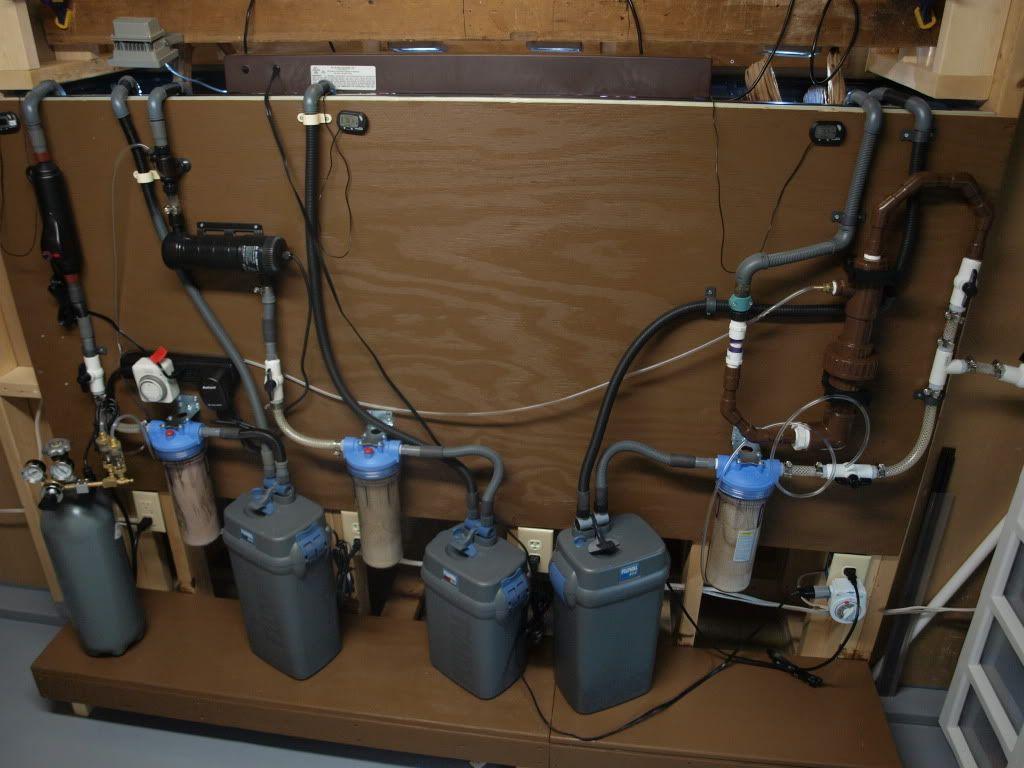 Now that 39 s a filter setup aquarium diy pinterest for Diy gravel filter