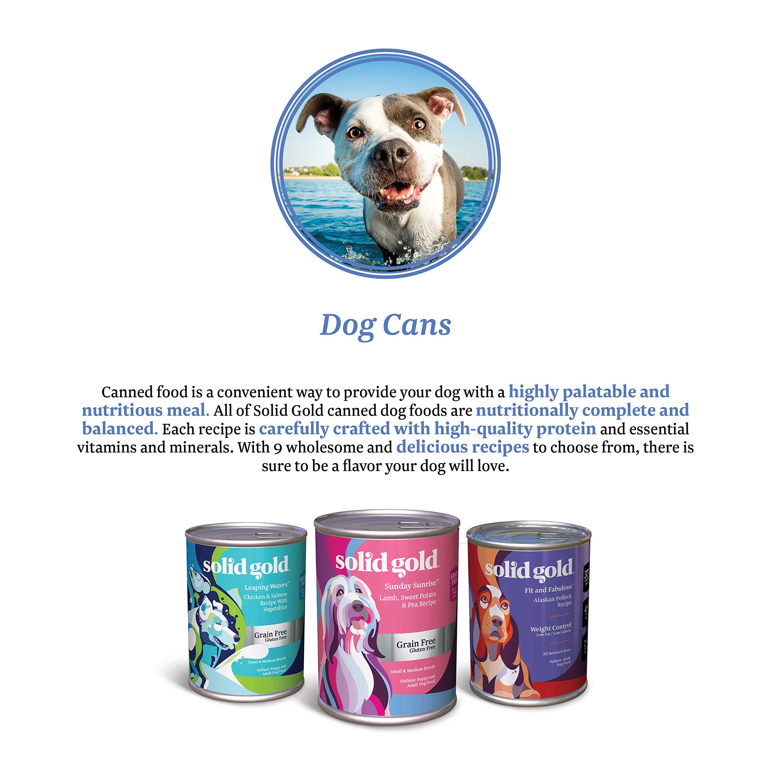 Solid Gold Beef Tripe And Broth Wet Dog Food For Sensitive And