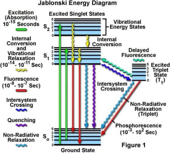 Jablonski energy diagram fluorescence fluorescence pinterest jablonski energy diagram fluorescence ccuart Image collections