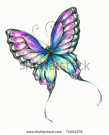 colored pencil butterfly | delicate colorful butterfly... | Drawings ...