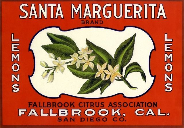 Fallbrook, San Diego County, CA -Santa Marguerita Lemon Citrus Fruit Crate Box Label Advertising Art Print. Printed on highest quality stock soft gloss paper. Actual image dimensions are approximately 8.75 x 12.50 inches.
