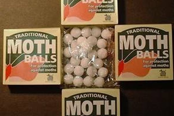 How to get rid of mice using mothballs mice how to get rid of mice using mothballs ccuart Images