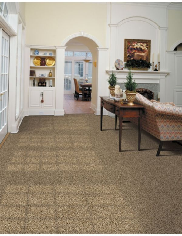 Pin By Dolphin Carpet Tile On Carpet Inspiration Palmetto Bay Miami Springs Cutler Bay
