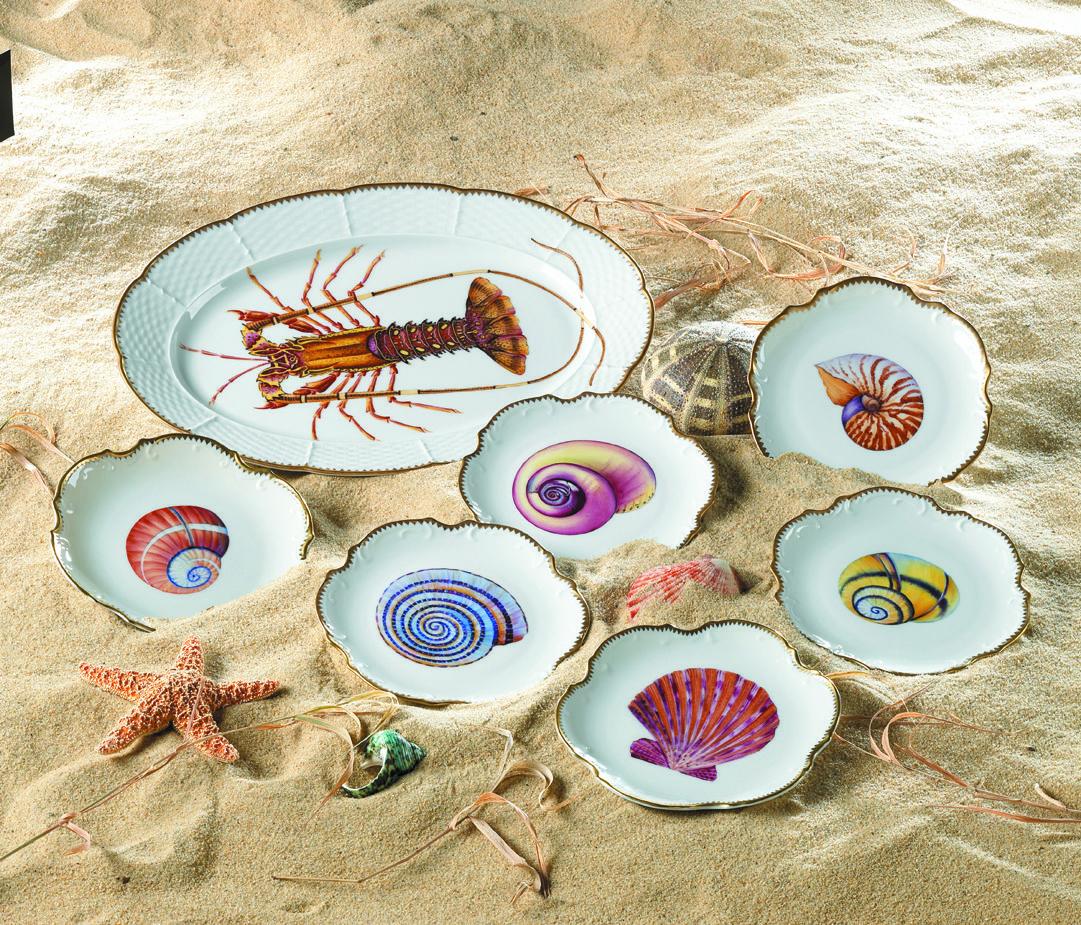 """Seascape Shells"" | Hand Painted Anna Weatherley ..."