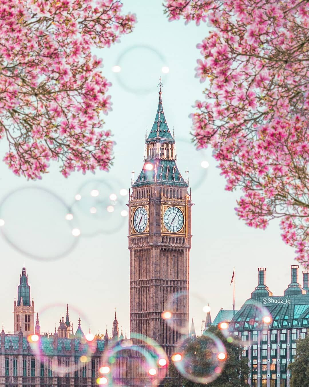 London In Spring Big Ben In Spring Cheery Blossom London London In Pink Photo By Shadzii Shadz Ig Inst Big Ben London London Photos London Wallpaper Aesthetic wallpaper city london