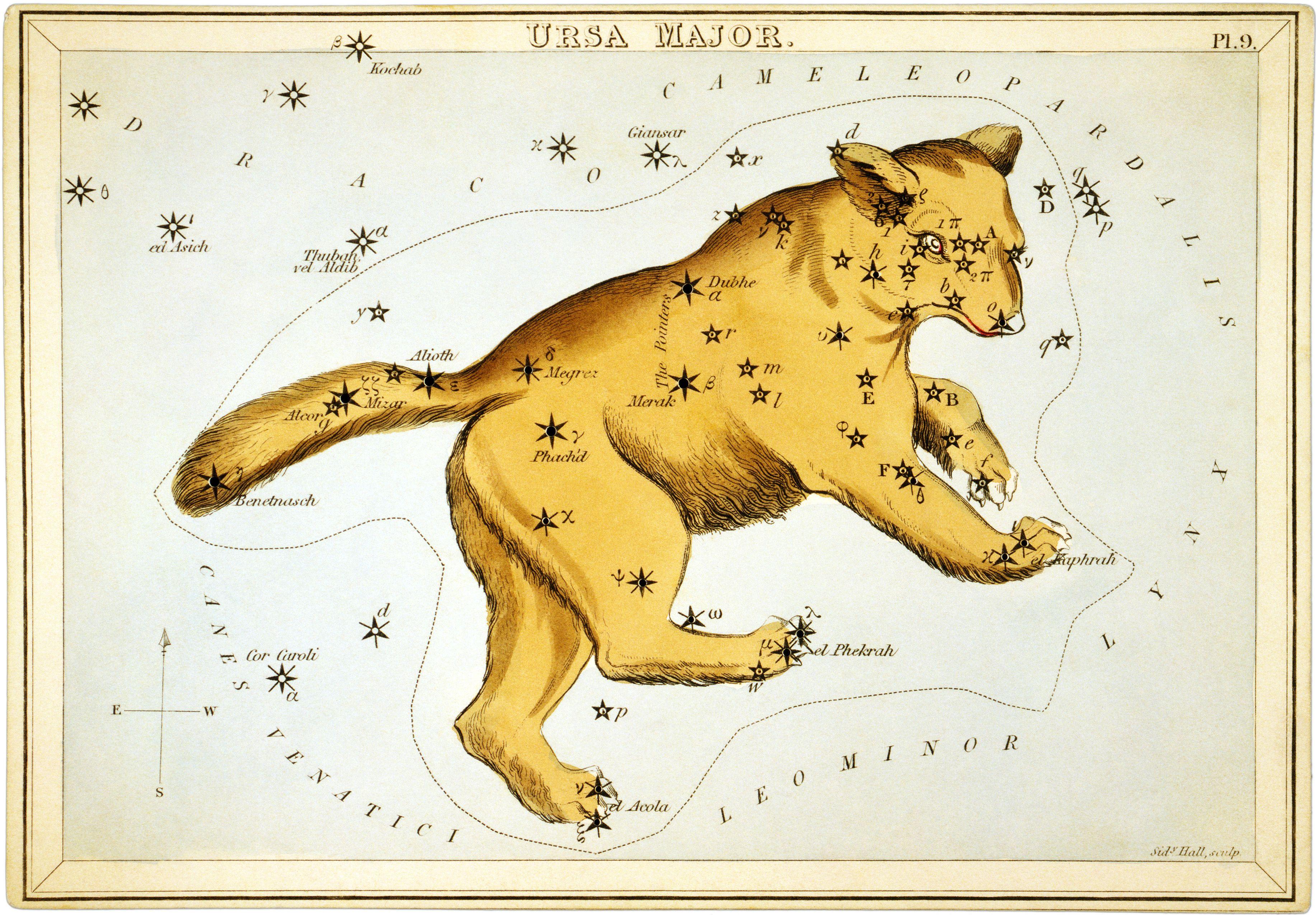 Elli Neidin Unelmia: Tänään on karhunpäivä