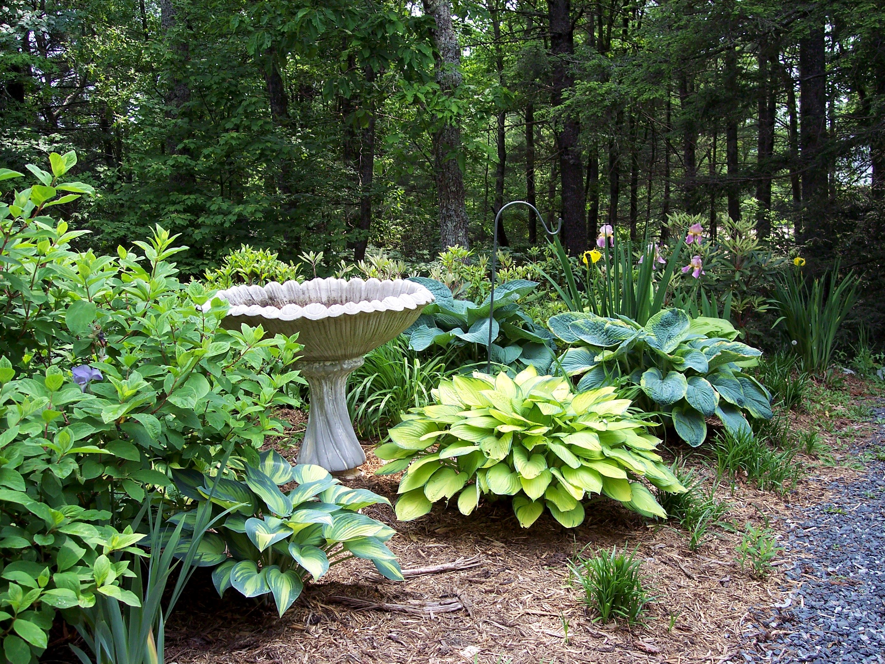 Cheap landscaping ideas for back yard it is not difficult to get