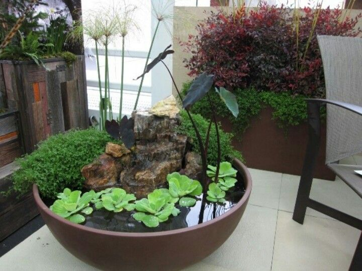 Good Indoor Water Garden Ideas Part - 8: Awesome Site With 30 Unique Garden Design Ideas Including This Nice Little Water  Garden.