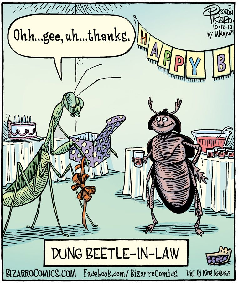 Crappy Birthday To You Dung Beetle
