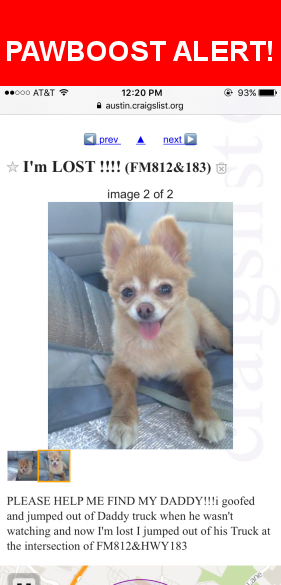 Pin On Lost Pets Of Austin Tx