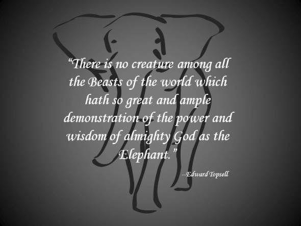 Elephant Quote 1 Jpg Your Elephant Art Elephant Quotes Elephant