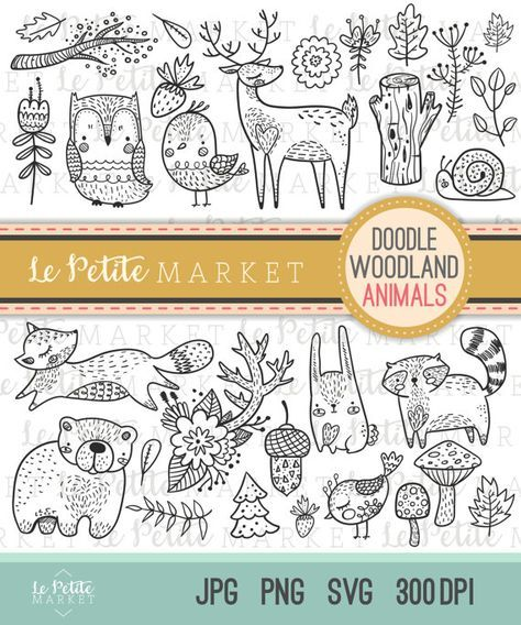 Cute Doodle Woodland Creature Clipart Forest Animal Digital Stamps Bird Owl