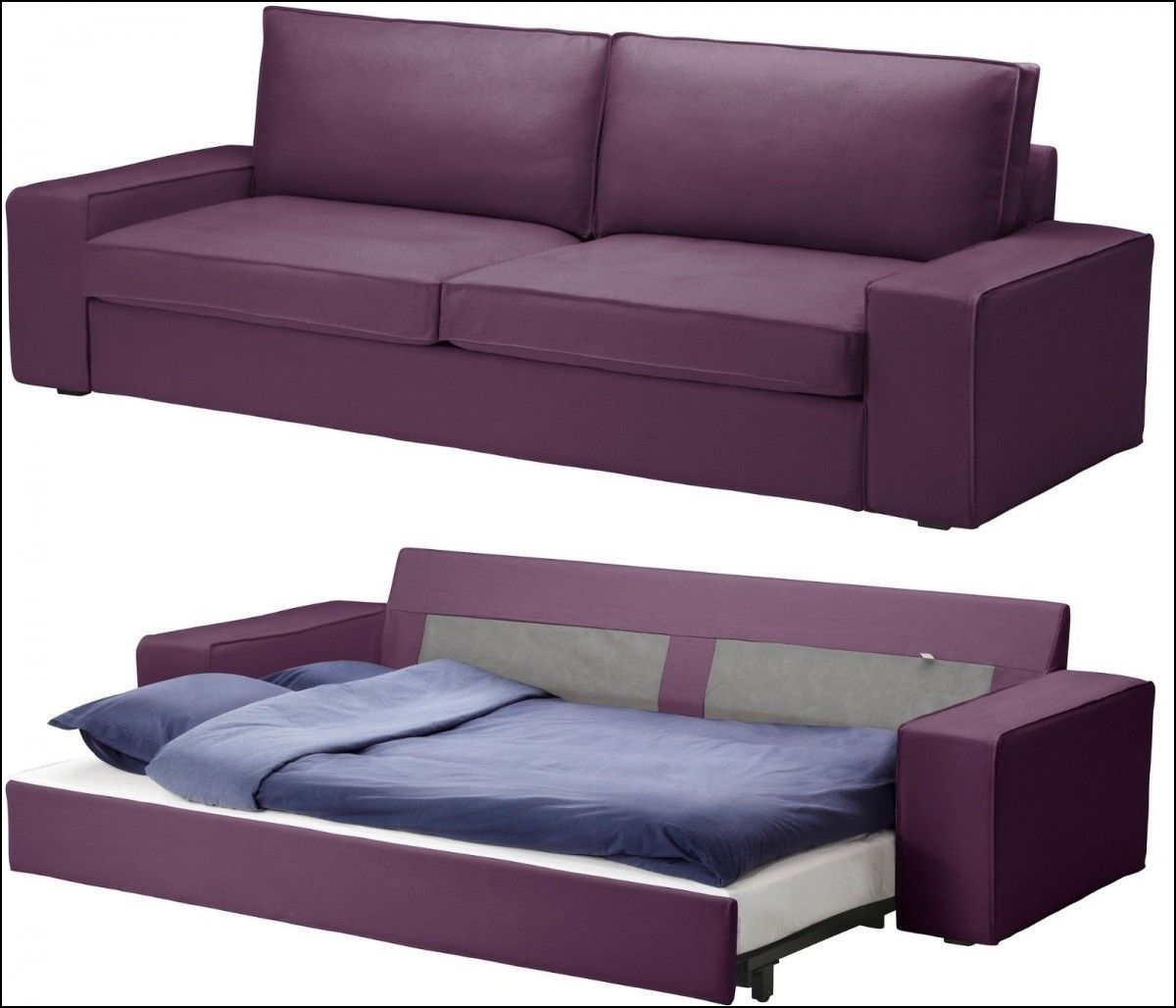 Attrayant Best Pull Out Couch Bed
