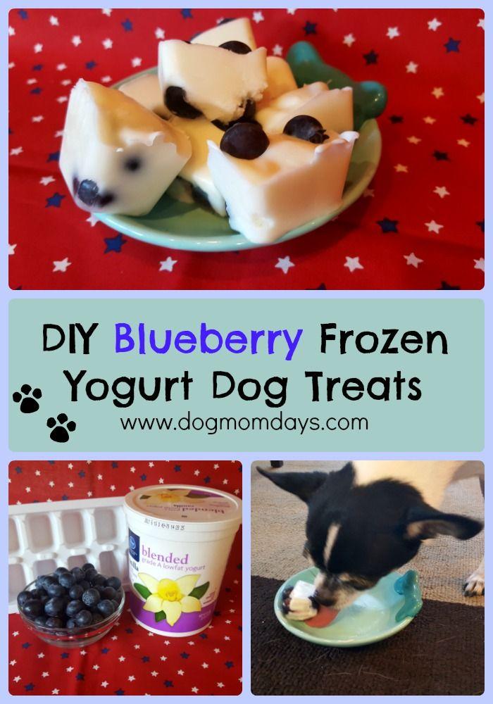 Diy Blueberry Frozen Yogurt Dog Treats Dog Biscuit Recipes