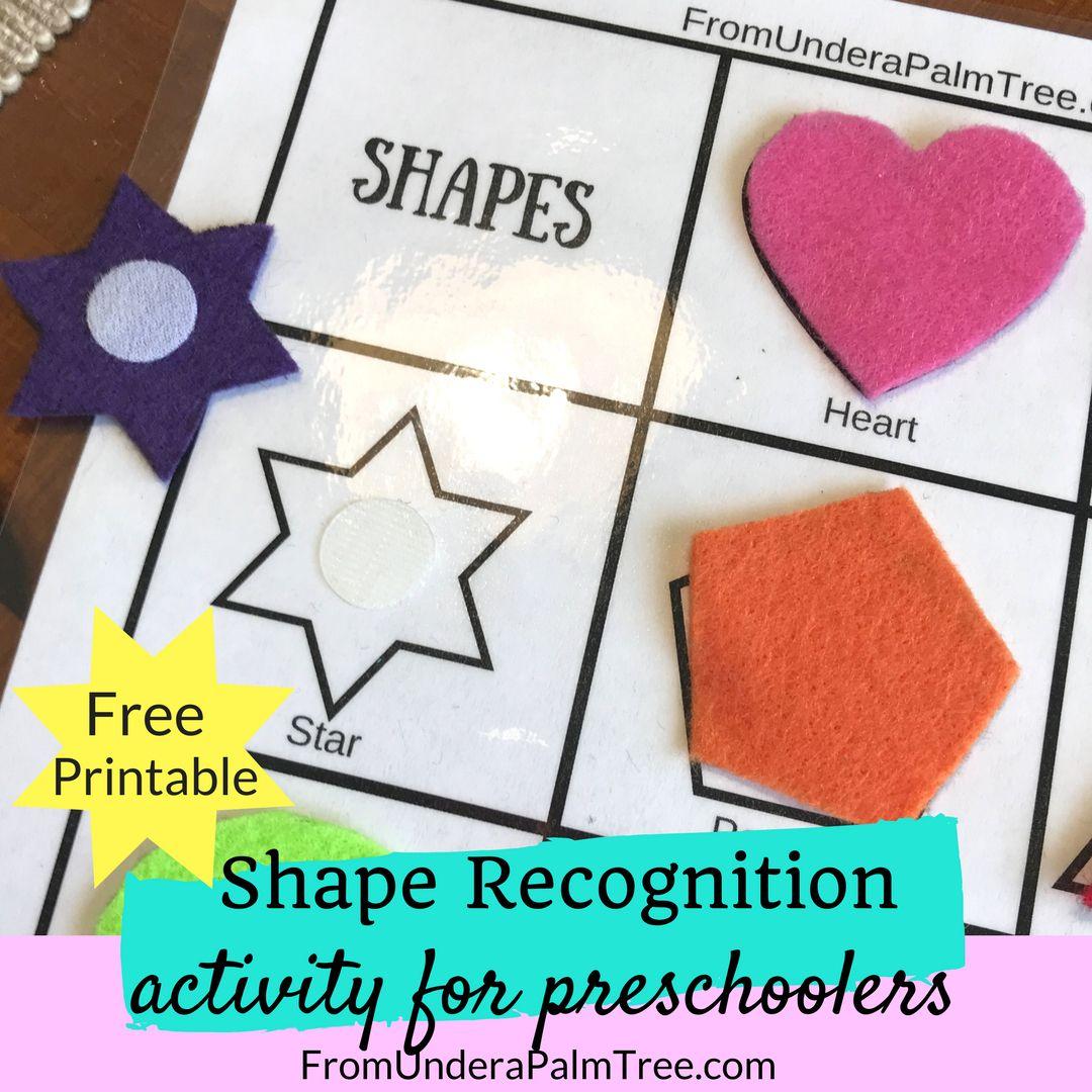 Shape Recognition Activity