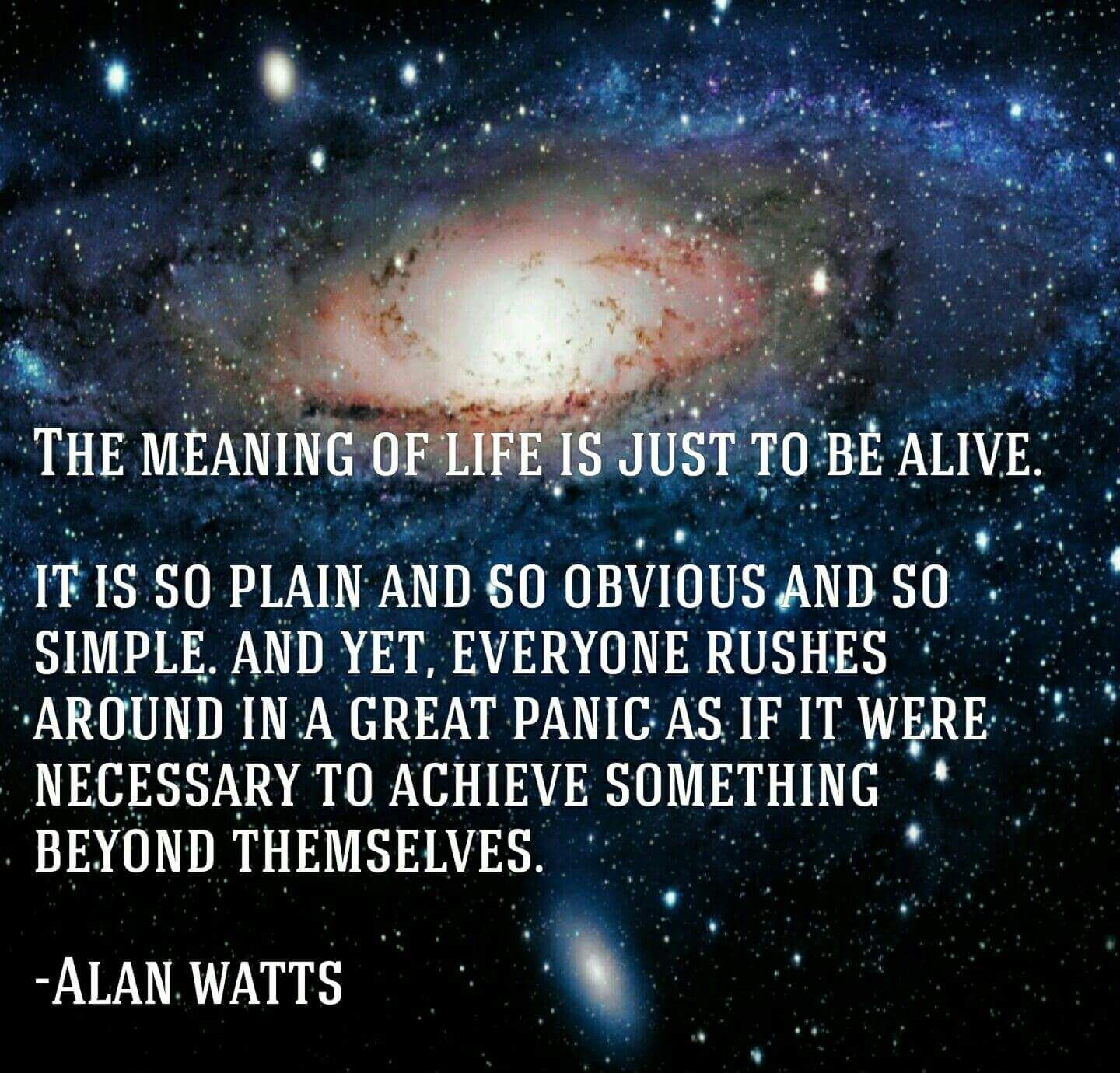 What Is The Meaning Of Life Quotes: Alan Watts Quotes - Google Search