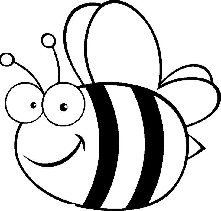 fat bees bees pinterest kids net and bees bee images for coloring bee coloring pages