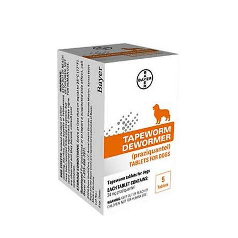 Bayer Tapeworm Dewormer Tablets for Dogs, 5 pack Dogs