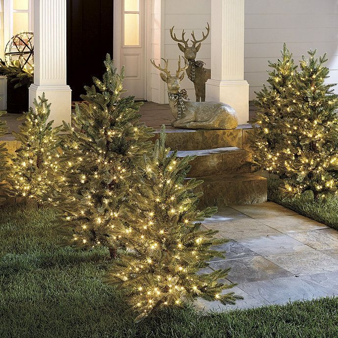Staked Twinkling Frasier Fir Artificial Christmas