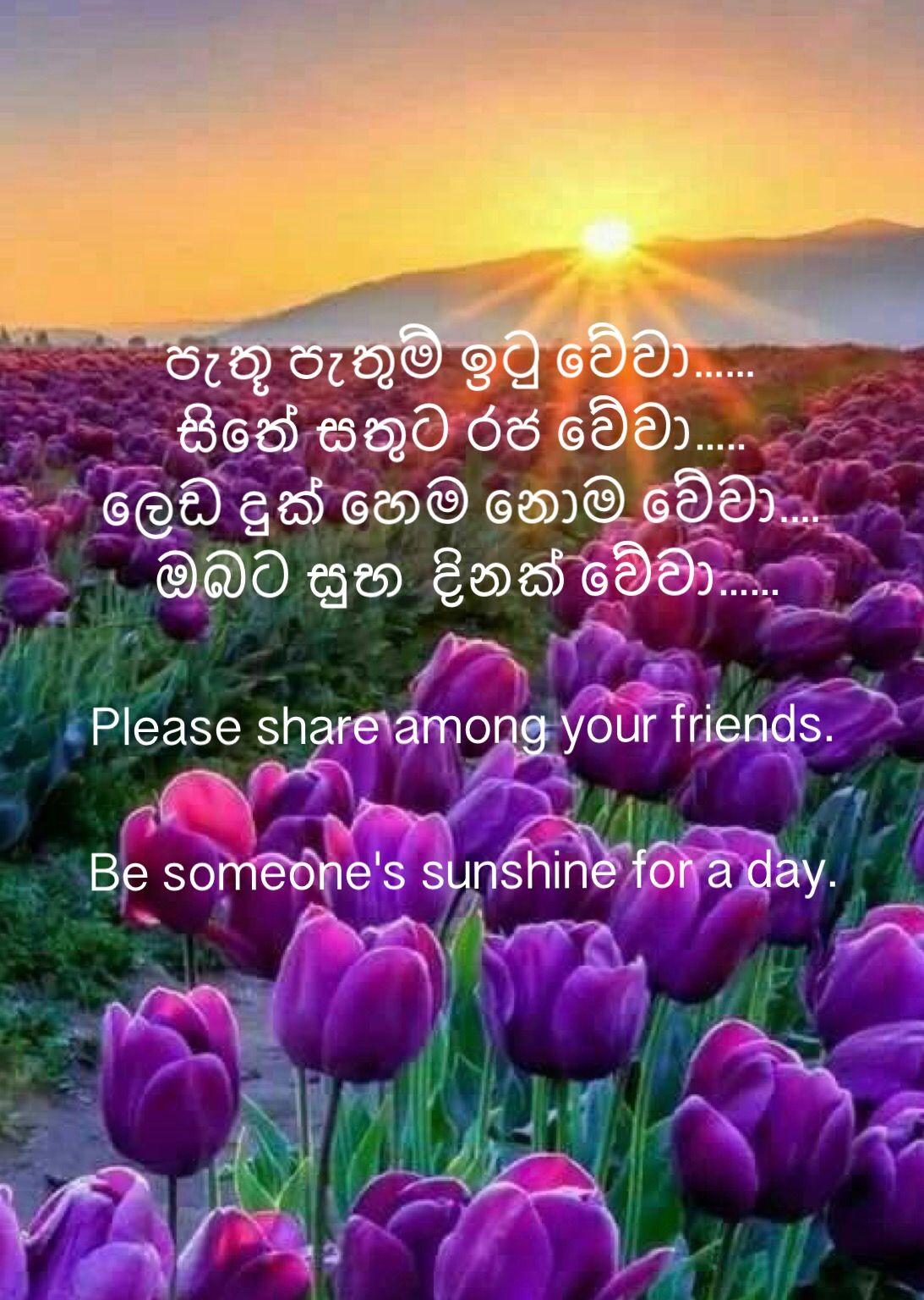 Pin By Sonali Vejpongsa On Best Sinhala Posts Good Morning